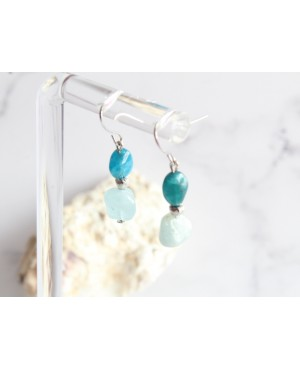 Earrings IN-KO588