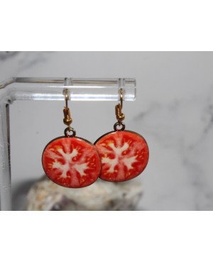 Earrings IN-KO572