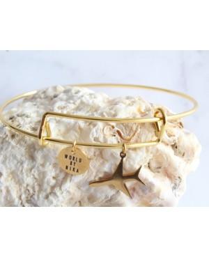 Bracelet plane 2